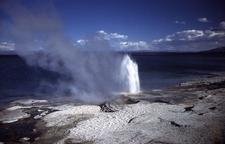 Lakeshore Geyser - Yellowstone - USA