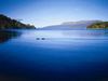 Lake Tarawera Scenic Reserve - North Island - New Zealand