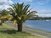 Lake Taupo - North Island NZ