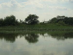 Lago Tisza