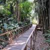 La Laguna Botanical Gardens - La Libertad