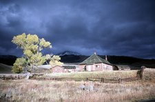 Lamar Buffalo Ranch - Yellowstone - Wyoming - USA