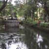La Mesa de cuencas y Parque Eco