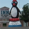 Large Penguin Statue In Cut Bank