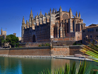 Guided walk in Palma Old City