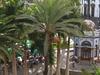 Las Palmas Gran Canaria Parque San Telmo  2 0 0 5