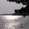 Last Rays On The Beach