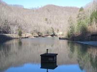Laurel Lake Wildlife Management Area