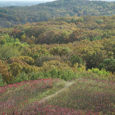 Leaf Hills Moraines