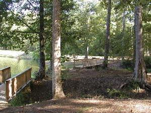 Legion State Park Campground