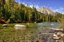 Leigh Lake Trail Views - Grand Tetons - Wyoming - USA