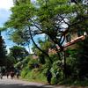 Lembang Road