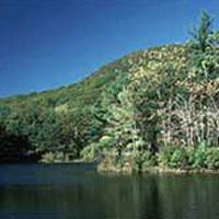 Leominster Forestal del Estado