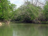 León del Río
