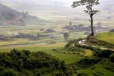 Le Pan Tan Valley - Mu Cang Chai