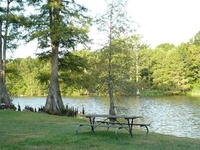 Leroy Percy State Parks