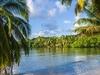 Île Sainte-Marie Tropical Landscape - Madagascar