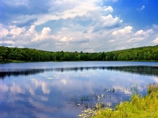 Lily Pond - Pike County - Delaware State Forest PA