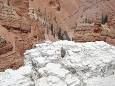 Limestone Canyon Rim