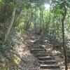 Lion Rock Trail - Hong Kong