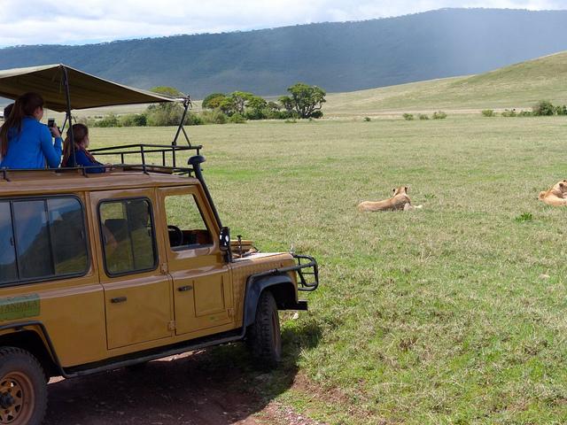 7 Days 6 Nights Join Group Serengeti Wildebeest Migration Photos