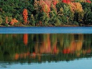 Little Lake Cedar