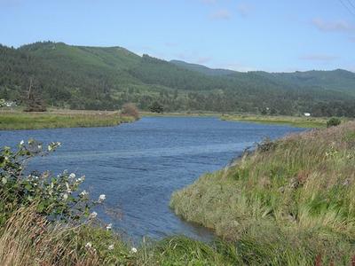 Little Nestucca River