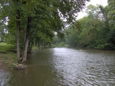 The West Fork Of The Little Pigeon River