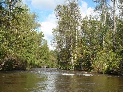 Little Sturgeon River Michigan
