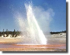Little Whirligig Geyser At Yellowstone - USA