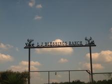 L . J . Blessings Ranch Near Freer