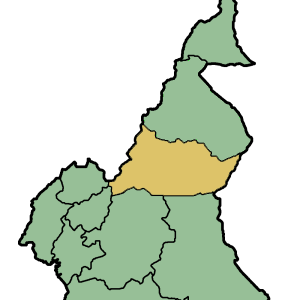 Location Of Adamawa Within Cameroon