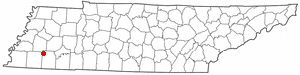 Location Of Whiteville Tennessee
