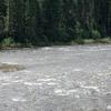 Lochsa Río