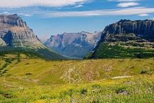 Logan Pass Meadow - Glacier NP