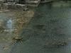 Indre River Azay Le Rudeau