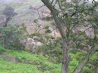Lima Região