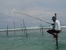 Lone Stilt Fisherman