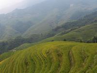 4 Days Yangshuo and Longji's Rice Terraces