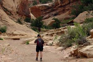 Torsión Baja Muley Canyon Hike