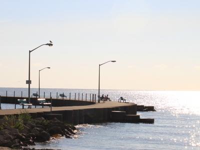 Luna Pier