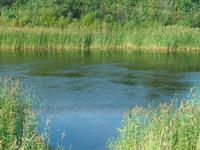 Ladoga Canal