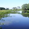 Parque Nacional Ilha Grande