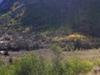 Panorama Of Lamoille Canyon