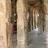 Carved Pillars Of Temple
