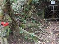 Legaspi Japanese War Tunnel