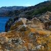 Lichen Encrusted Rocks Adorn The Cliffs Of Santa Cruz Island