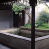 Lingering Garden Intertwined Trees Pavilion