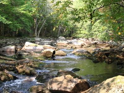 Little  River In  Fall