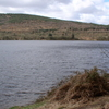 Llwyn On Reservoir